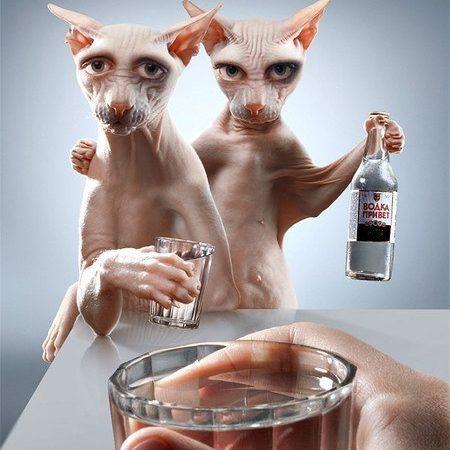 Тварини та алкоголь
