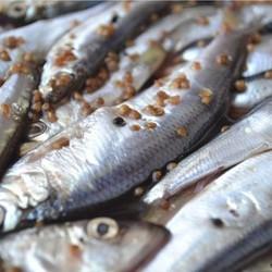 Риба пряного посола