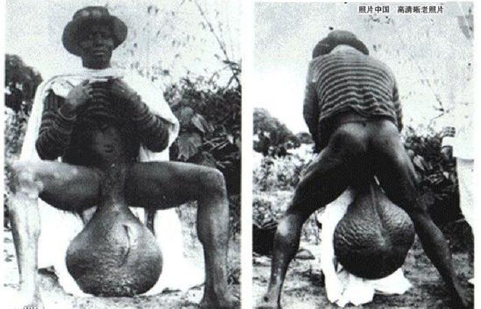 Племя Бубал з великими …