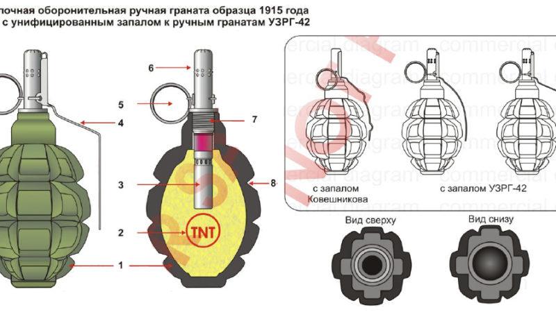 Чому гранату Ф-1 звуть «лимонка»