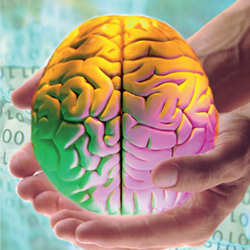 Як поліпшити інтелект