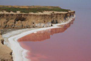 Сиваш — українське «Мертве» море