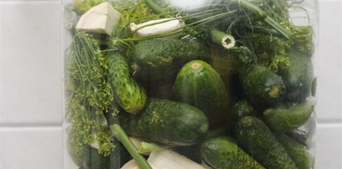 Малосольні огірки з кропом – рецепт