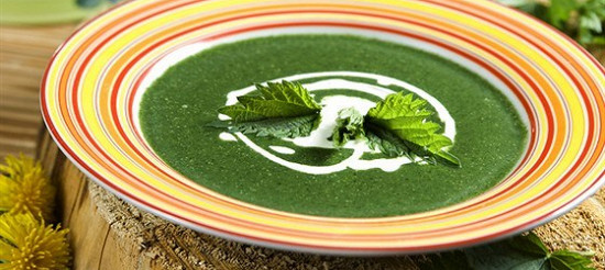 Суп-пюре з кропиви – рецепт
